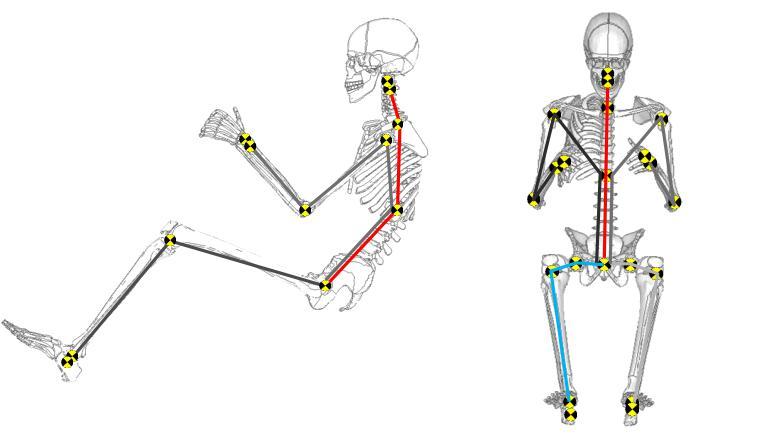 Menschmodelle ProHMSG